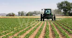 az agricole